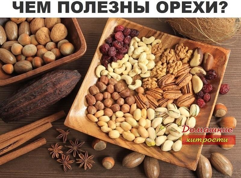 kakie-orehi-dlya-kachestva-spermi