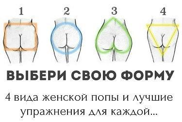 Разновидность женских задниц
