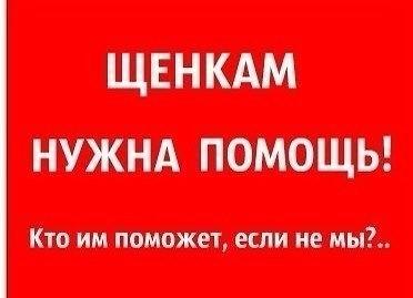 golie-znamenitosti-fotoshop-mariya-kozhevnikova