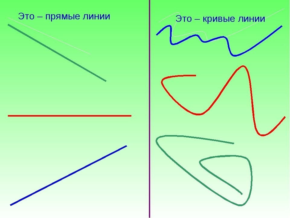 знакомство с понятием вертикальная линия