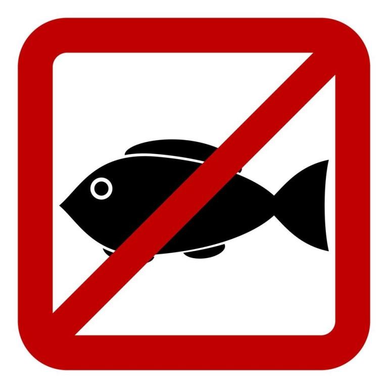 Промысловый размер рыбы определяется от вершины рыла (при закрытом рте) до основания средних лучей хвостового плавника.