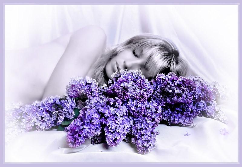 Сирень во сне является признаком грядущих перемен в личной жизни, предвкушение больших чувств и увлекательной любовной связи.