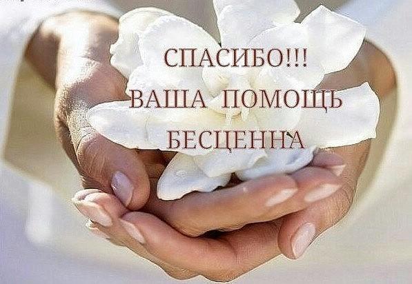 http://itd2.mycdn.me/image?id=861018413750&t=20&plc=WEB&tkn=*sZHmi9FXsKml5kC1jUBB8LNtTsk