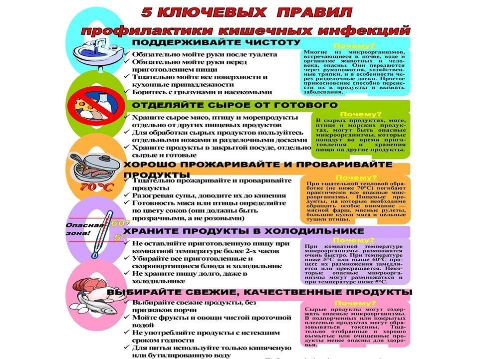 Что нужно знать о кишечных инфекциях - Новости - Берестовицкий районный  центр гигиены и эпидемиологии